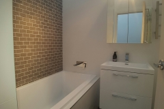 bathroom renovation after shot
