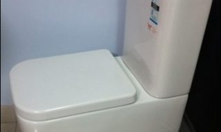 Pheonix Back to wall toilet