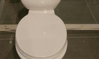 Waverly close couple toilet