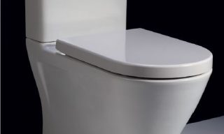 resort rimless back to wall toilet